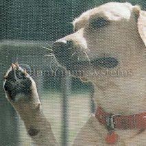 Πανί  Σίτας Pet Screen Ειδικό Για Κατοικίδια